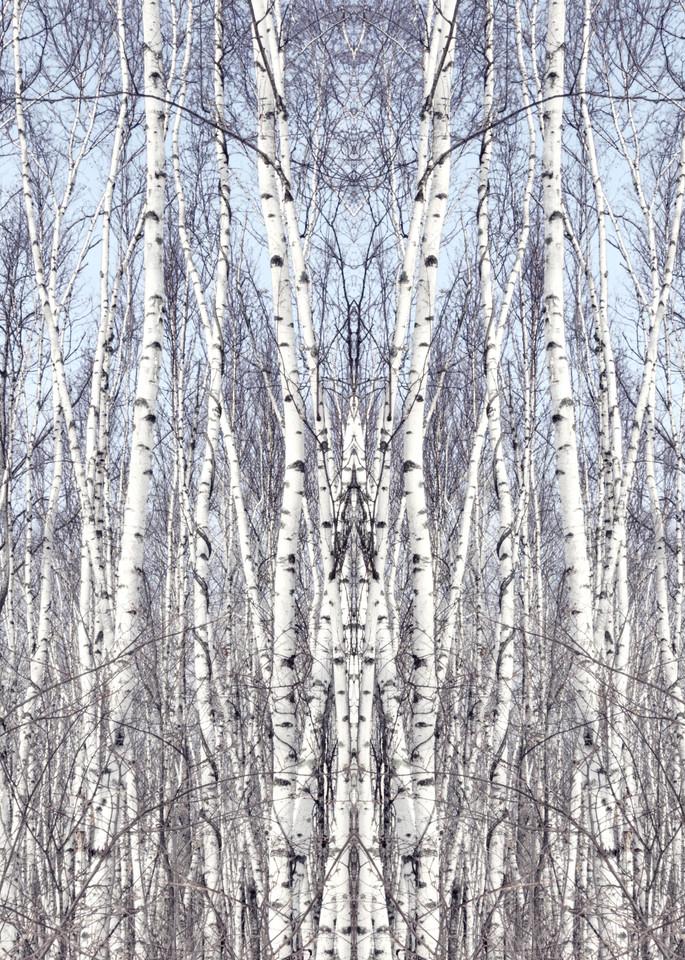 Birch Zen I Art | studio176