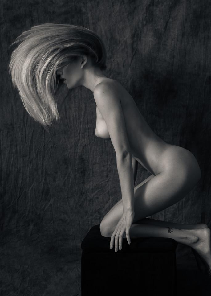 Alina S Hair Photography Art | Dan Katz, Inc.