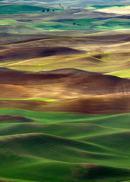 Palouse Waves Photography Art | Mary Edwards Photography