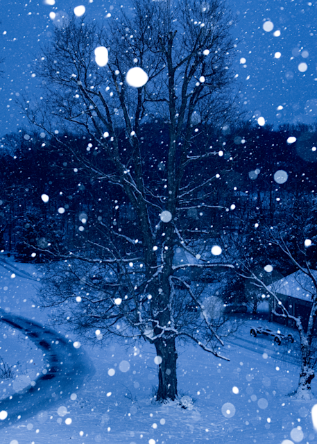 Suburban Snowfall 4 Photography Art | Hatch Photo Artistry LLC