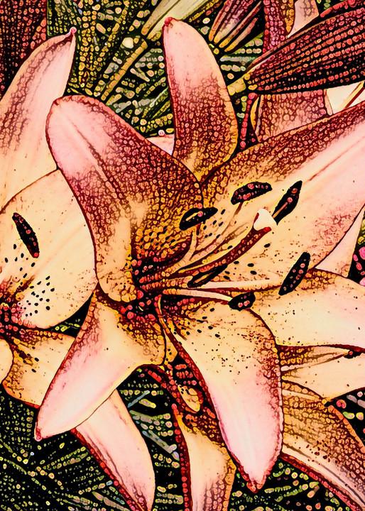 """Tiger Lilies"" Photography Art | CJ Harding"