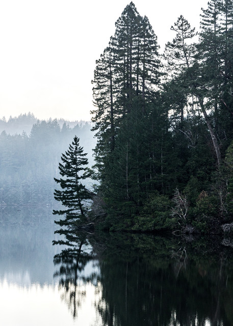 Introspection - foggy sunset in Marin County, California photograph print