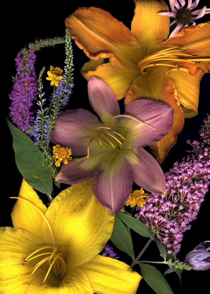 Daylilytriolrgbest  Photography Art | Koral Martin Healthcare Art
