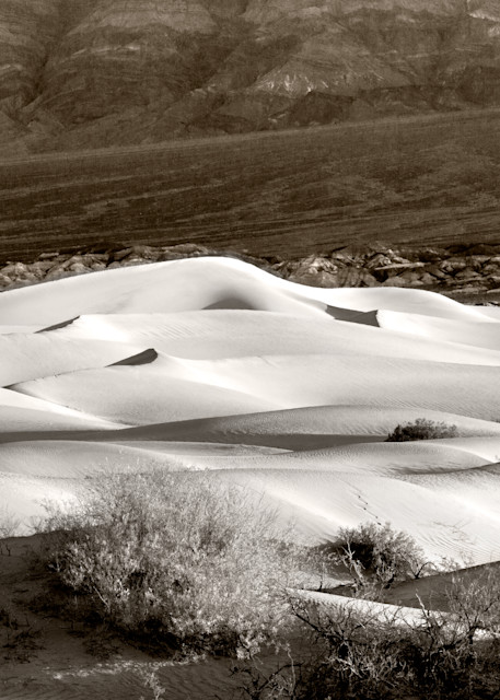Sand River   Death Valley, Ca  # 4773 Photography Art | Mary Edwards Photography