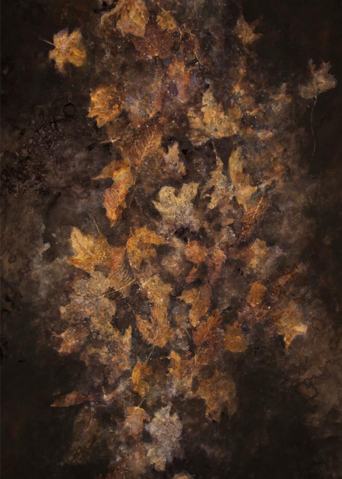 Frozen Puddle Art | Romanova Art