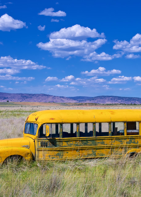 California School Bus Art | Shaun McGrath Photography