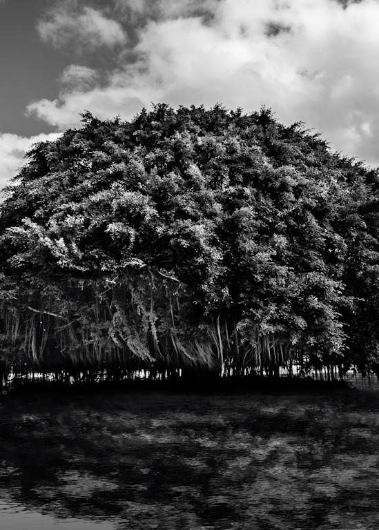 Quite Symphony Photography Art | cosimo scianna