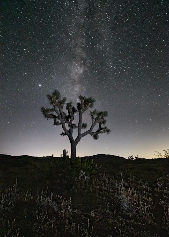 Endless Cosmos Art | Chad Wanstreet Inc