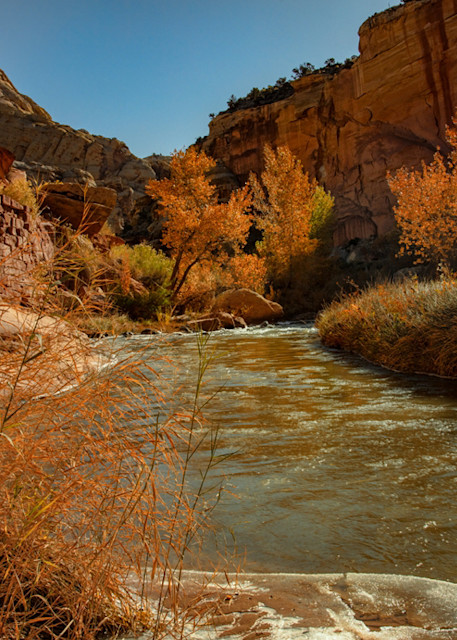 Virgin River Hickmans  1773 Cr 19  Photography Art | Koral Martin Healthcare Art