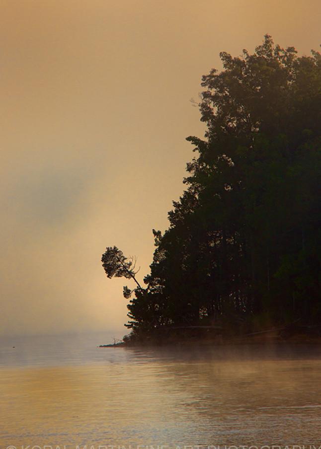 Treefog Ky Lake Barkley8623srgb   Photography Art | Koral Martin Healthcare Art