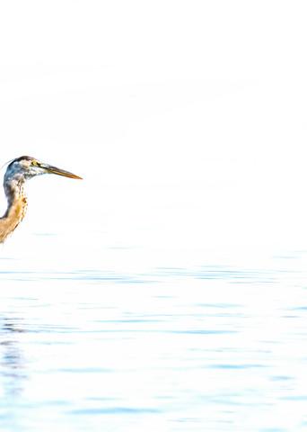 Fishing 8171 Art | Koral Martin Fine Art Photography