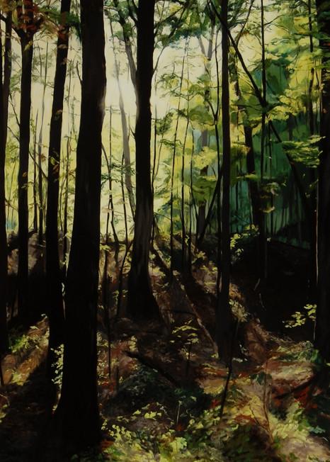 Late Afternoon Landscape Art | Helen Vaughn Fine Art