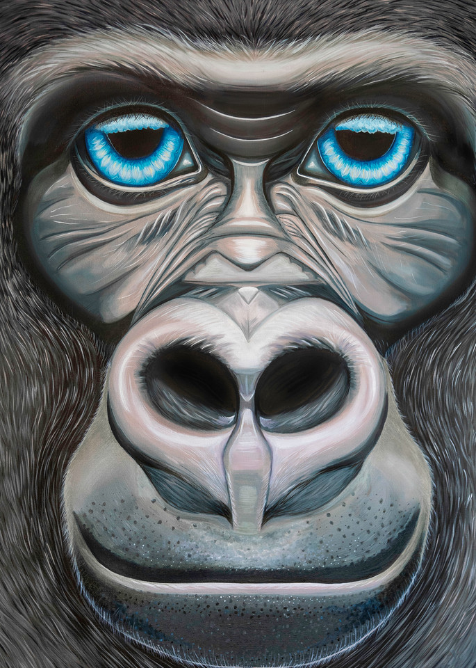 Gorilla Blue eyes print