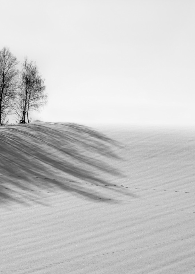 Hokkaido Study09 Art | Roy Fraser Photographer