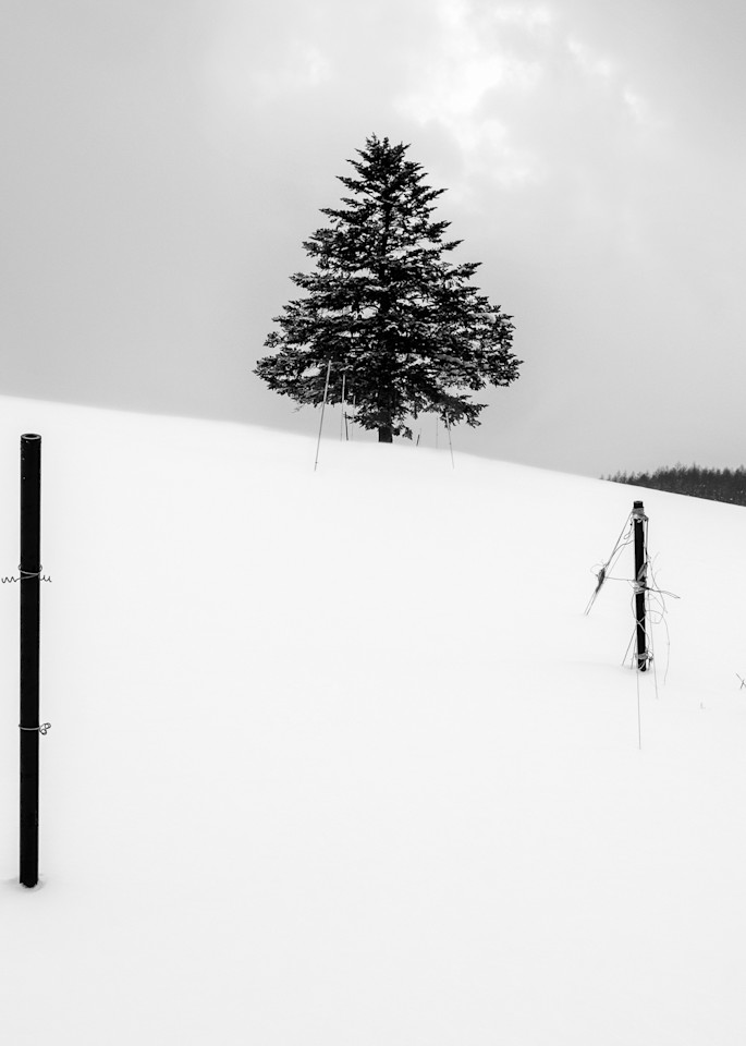 Hokkaido Study12 Art | Roy Fraser Photographer