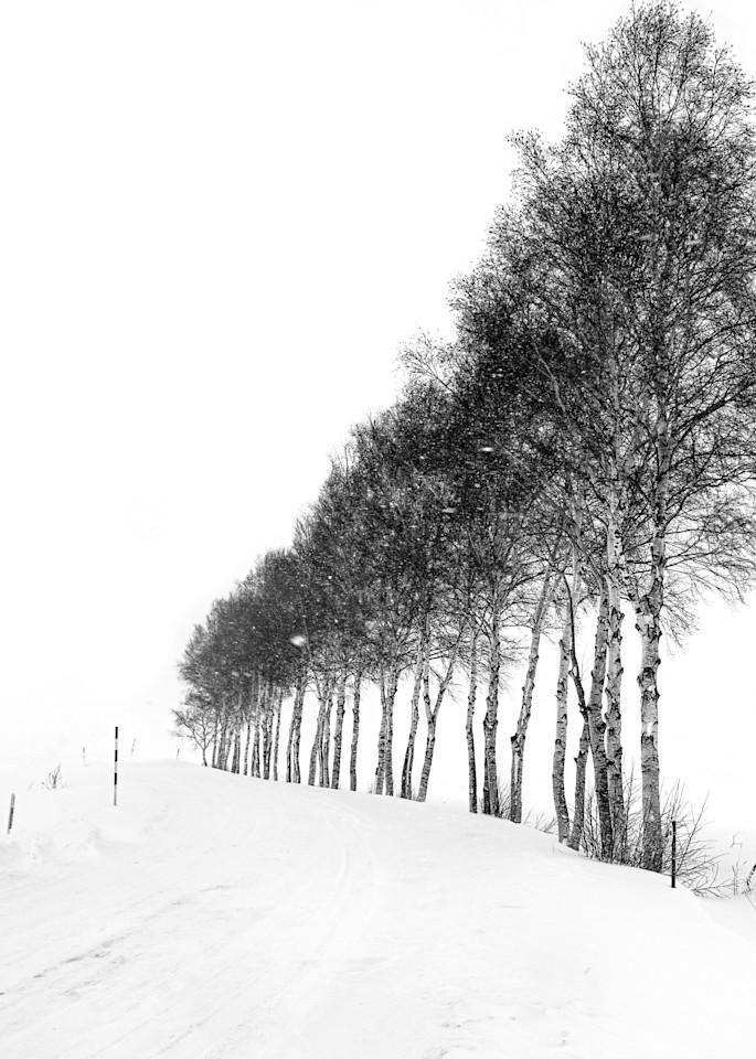 Hokkaido Study31 Art | Roy Fraser Photographer
