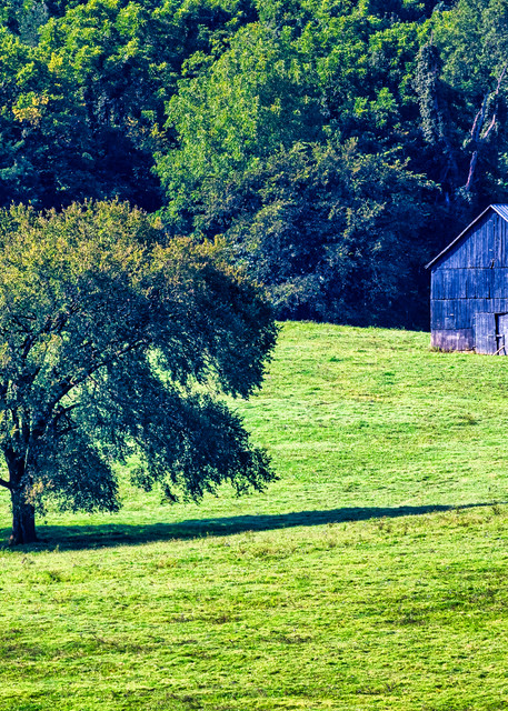 Lively Farms Tobacco Barn - Kentucky fine-art photography prints