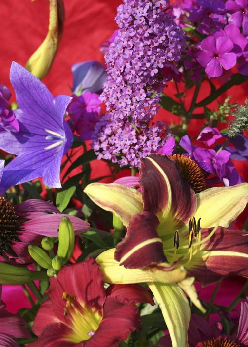 Gardens Glory  Art | Rhona LK Schonwald
