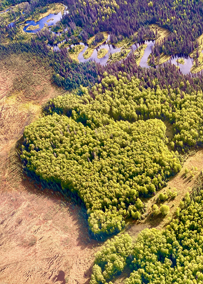 Love Mother Earth Photography Art | Visionary Adventures, LLC
