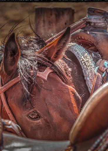 Peek Photography Art   JL Grief Fine Art Photography