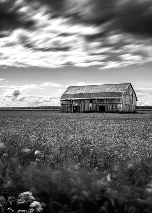 Wind Art   TG Photo