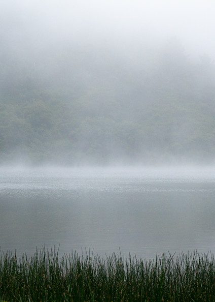 Searching - A foggy morning boat ride in Northern California photograph print