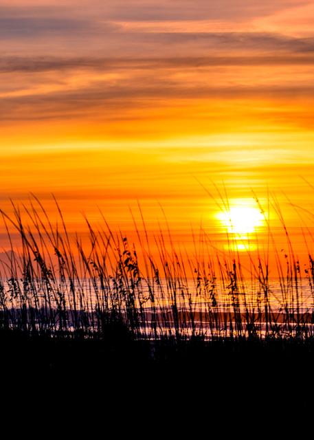 Beach Sunrise on Hilton Head from Sand Dunes
