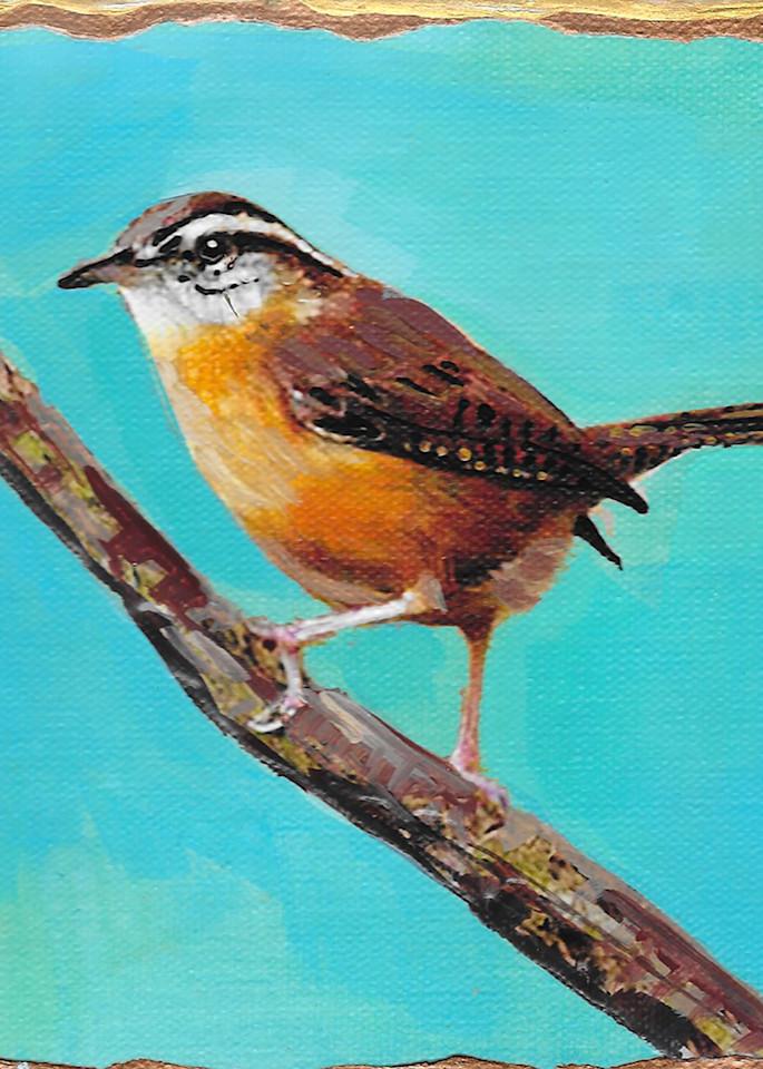 Carolina Wren Art   Channe Felton Fine Art