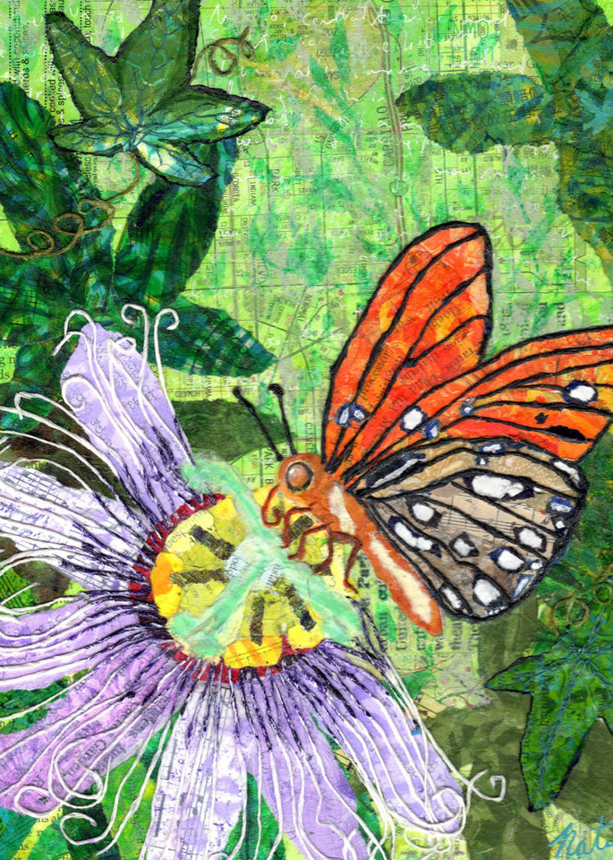 A Butterfly's Passion: The Gulf Fritillary And The Passionflower Art | Poppyfish Studio