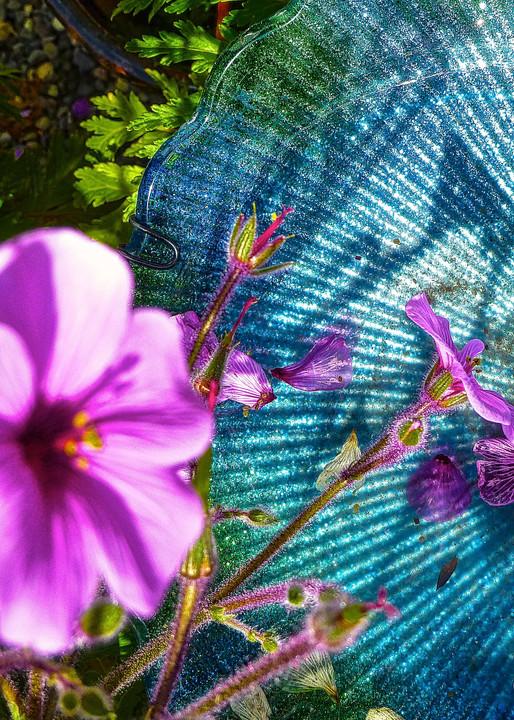 inandout, focus, see, torquoise, jackierobbinsstudio, photographicprints, buyartonline