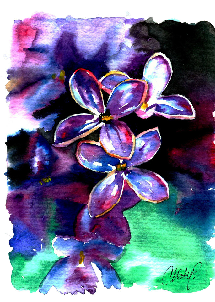 Lilac Flower Art   Christy! Studios