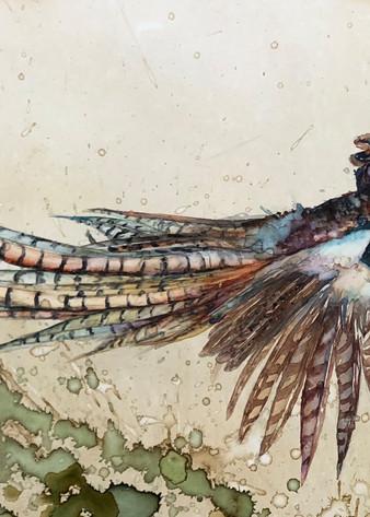 Pheasant Flight Art | Christy! Studios