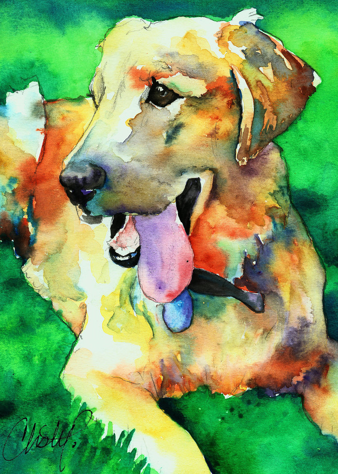 Golden Labrador Retriever  Art | Christy! Studios