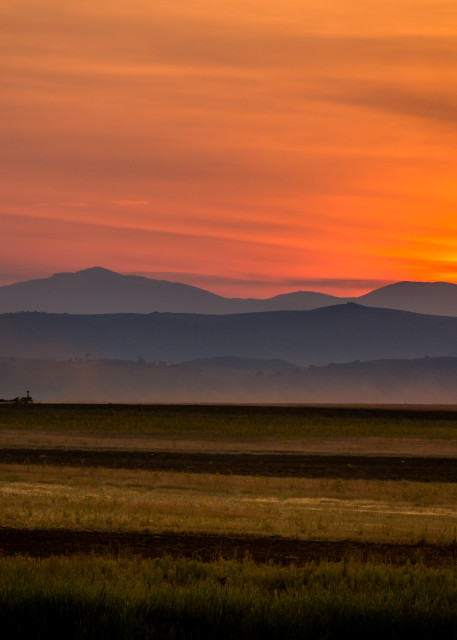 Farmer in the Field at sunset during Colorado fires
