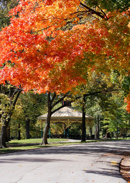 Fall at the Humboldt Pavilion in Tower Grove Park