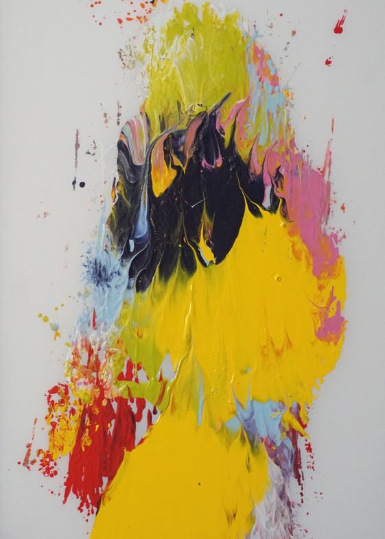 Lady With Black Birds Art | Maciek Peter Kozlowski Art