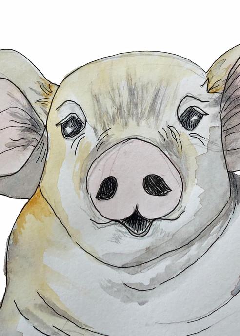 Purty Pig  Art | Color Splash Ranch