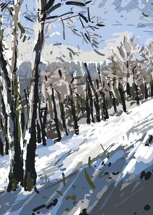 Pine Ridge In Snow Art | Artofandrewdaniel