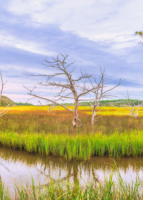 Jekyll Island Inlet   Susan J Photography