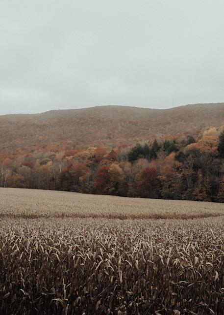 America Photography Art | LenaDi Photography LLC