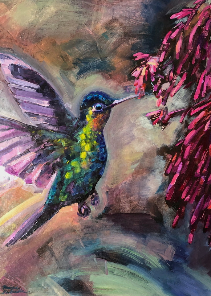 """by Monique Sarkessian .This is a high quality print of my original oil painting """"Glory Gatherers"""" of a ruby throated hummingbird gathering nectar from fuschia trumpet flowers."""