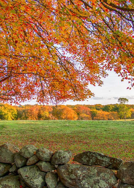 Middle Road Fall Leaves Stone Wall Art | Michael Blanchard Inspirational Photography - Crossroads Gallery