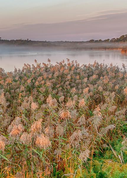 Squibby Foggy Sunrise Art | Michael Blanchard Inspirational Photography - Crossroads Gallery