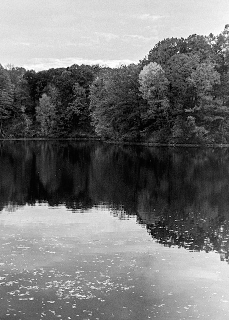 Autumn Has Broken Photography Art | LenaDi Photography LLC