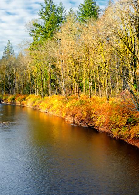 Late Autumn Colors, Tilton River, Lewis County, Washington, 2013