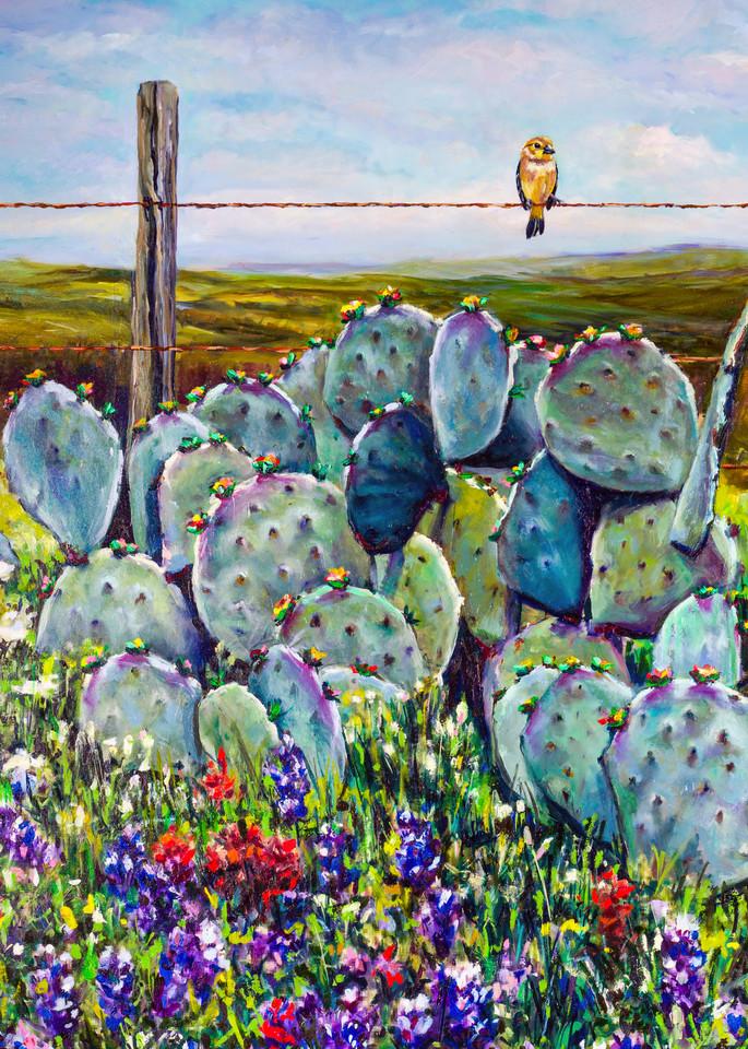 Bird's Eye View Art   Channe Felton Fine Art