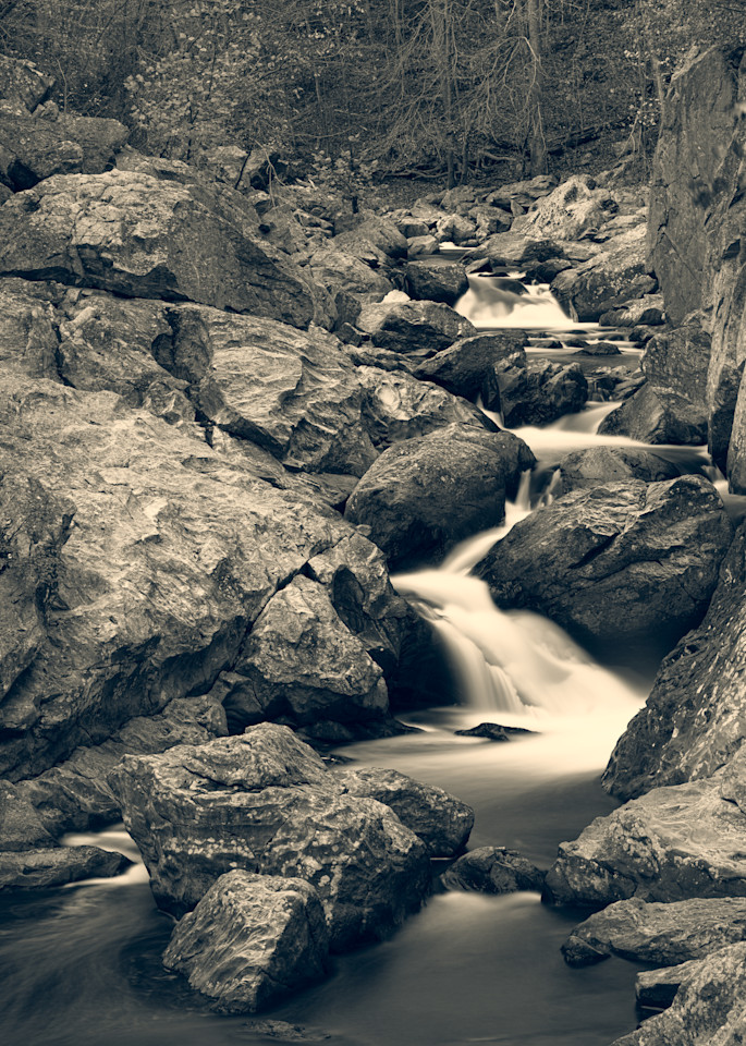 Nature Bw 1553 Photography Art | Dan Chung Fine Art