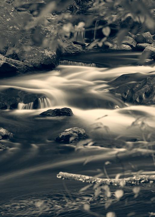 Nature Bw 1583 Photography Art   Dan Chung Fine Art