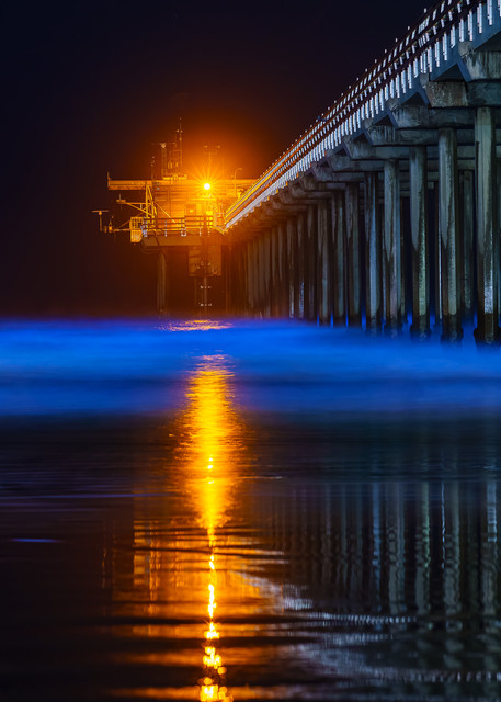 Scripps Pier, La Jolla Bio Luminescence Wall Art Print by McClean Photography