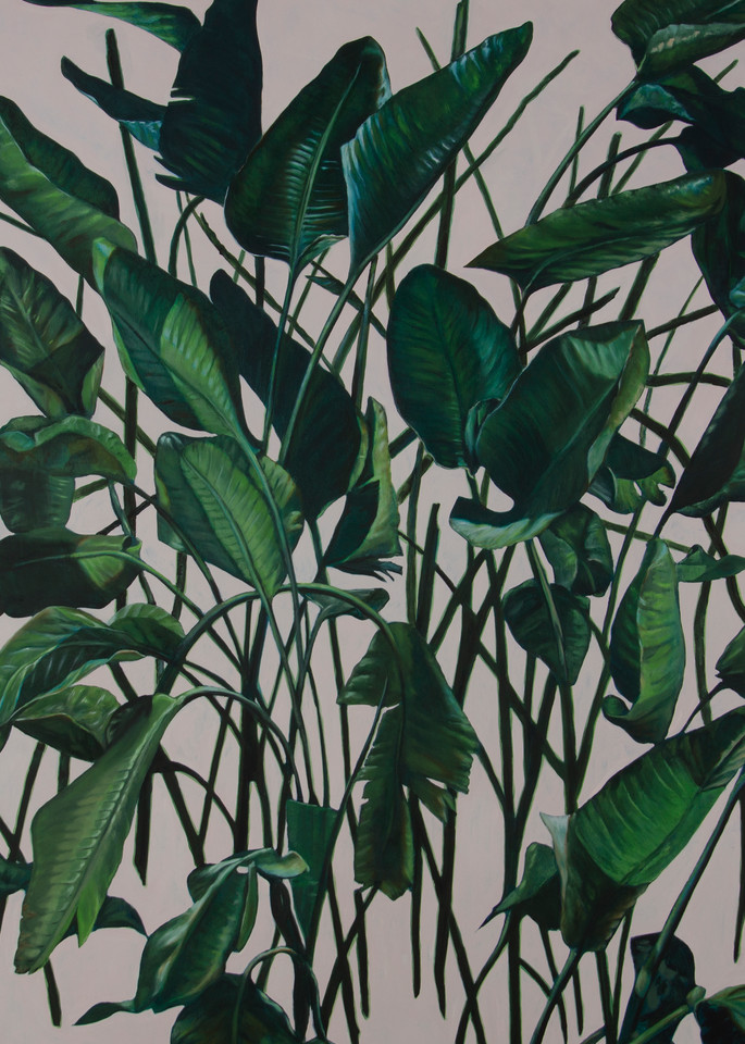 Leaves Art | Jono Wright Art